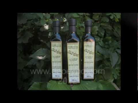 "GeoEvoo OLO-ENA 2012  ""The Greek roots of the Olive""."