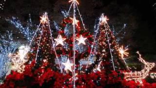 Bon-Bon Az első karácsony