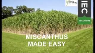 Miscanthus Chip Harvest 2017