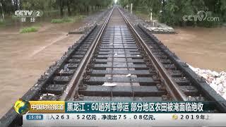 [中国财经报道]黑龙江:60趟列车停运 部分地区农田被淹面临绝收  CCTV财经
