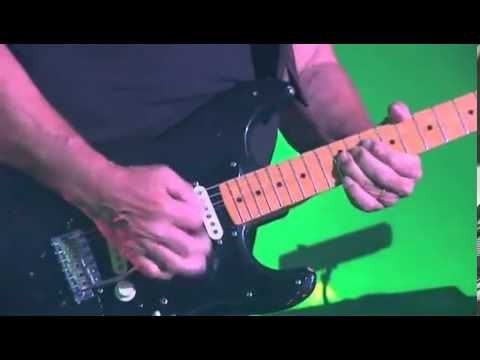 DAVID GILMOUR ECHOES(GUITAR SOLO LIVE IN...