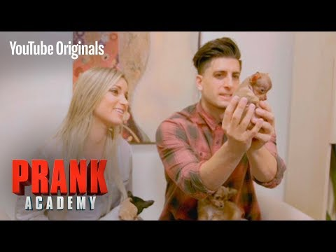 MULTIPLYING PUPPY PRANK!!! | Prank Academy | Episode 12