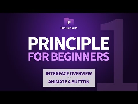 Principle for Beginners (Part 1) - Interface Overview & Button Animation