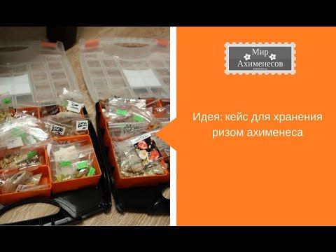 Кейс для хранения ризом ахименеса