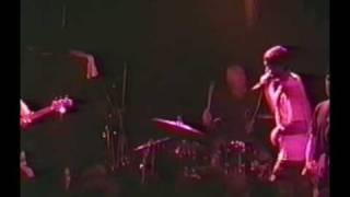 The Vandals - Live