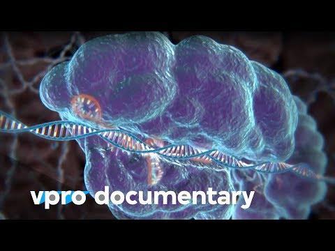 Hack your DNA