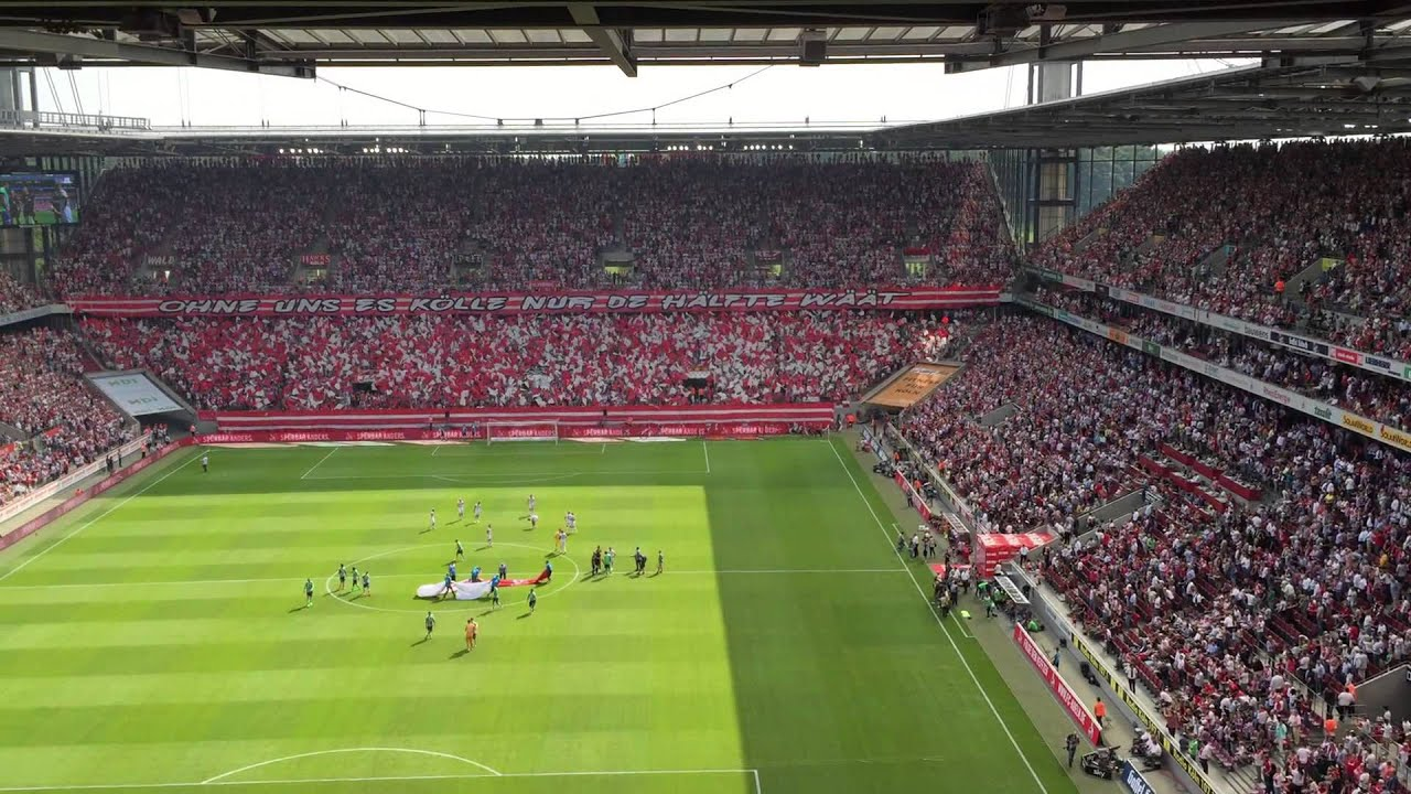 Vfl Wolfsburg Blog