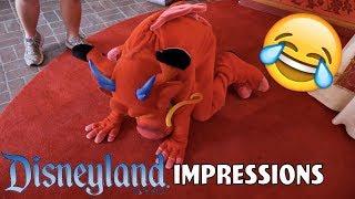 I BROKE MUSHU!  Disneyland Impressions
