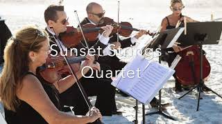Sunset Strings Quartet- Just the Way You Are