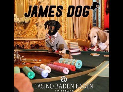 Crusoe: James Dog, at Casino Baden Baden in Germany