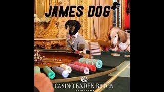 Video Crusoe: James Dog, at Casino Baden Baden in Germany download MP3, 3GP, MP4, WEBM, AVI, FLV September 2017