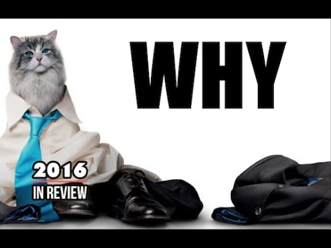 Nine Lives - Matimation 2016 In Review