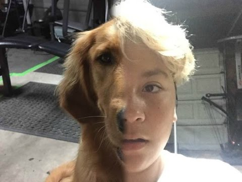 man turned into a dog