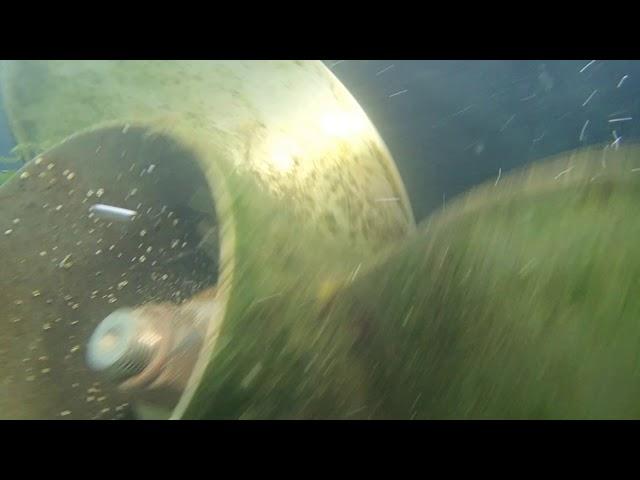 Sea Ya Later 06/04/20