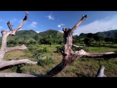 Discover Nigeria with ZODML: Koma Hills, Adamawa State