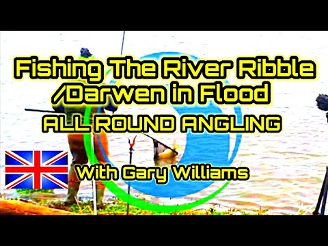 Fishing The River Ribble And Darwen In Flood