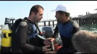 iran documantary diving s2