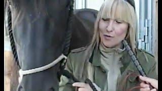 Villich - NATACHA - TV - RTL Pferde