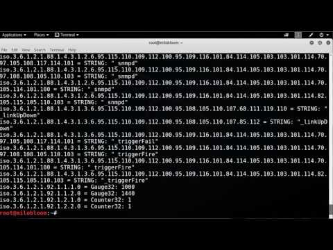 How To  Using Snmpwalk