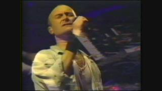 Phil Collins - Against all odds(take a look at me now) live in Peru 1995