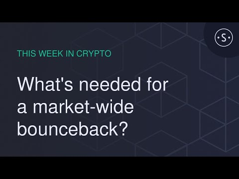 What's needed for a market-wide bounceback? (This Week in Crypto)