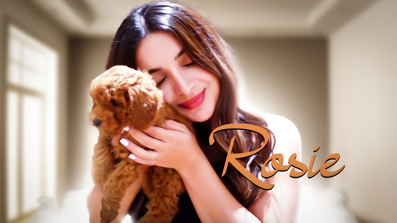 WELCOME HOME ROSIE ❤ عضو جدید خانواده