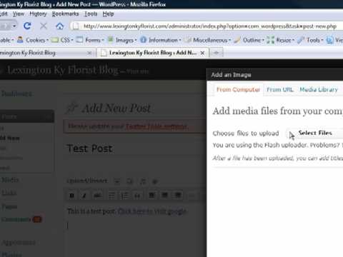 how to add a link in wordpress text