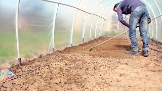 Jak przygotować podłoże do uprawy w tunelu foliowym
