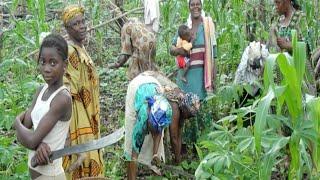 Célébration du genre et forêt 2014 : inspirer le changement