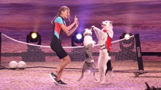 America's Got Talent 2017 Semi-Finals Sara, Hero & Loki Performance & Comments S12E19