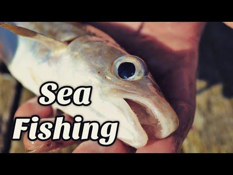 Sea Fishing - Walton On The Naze Pier, Part 1