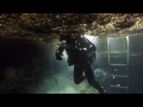 ADI Dives | Manatee Springs State Park, Dive at the Catfish Hotel