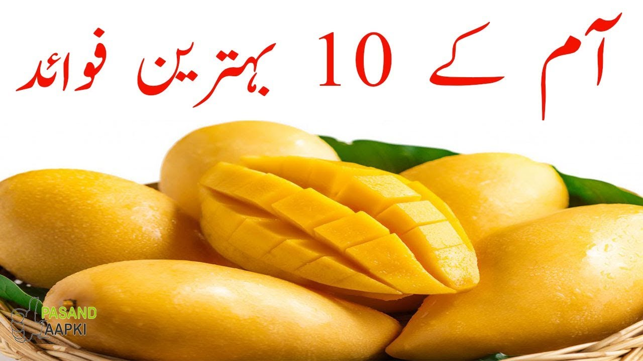 mango : mangos : mango fruit of full information in urdu with Dr Khurram:Pasand Aapki