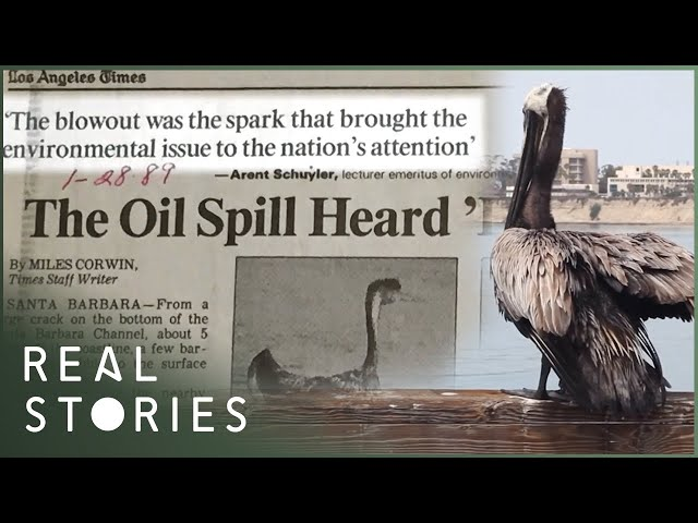 Deadly Ocean: California's $250 Million Oil Spill (Fossil Fuel Documentary)   Real Stories