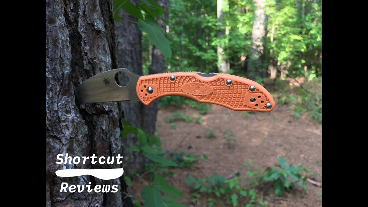 Spyderco HAP40 Wharncliffe Delica presented by