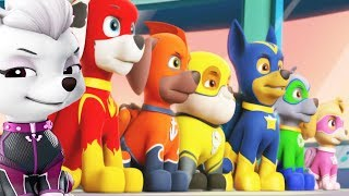 Paw Patrol Mission Paw Pups Team Training Day - Fun Pet Animal Game For Kids