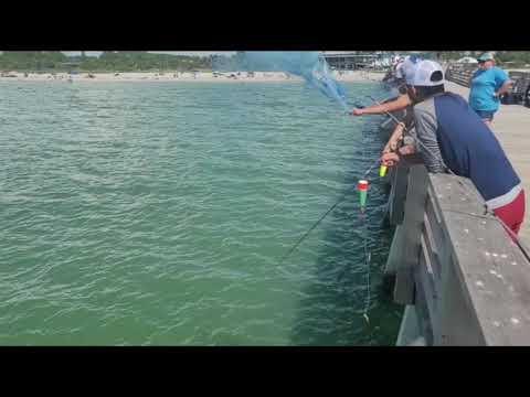 Fishing in Sarasota, Florida