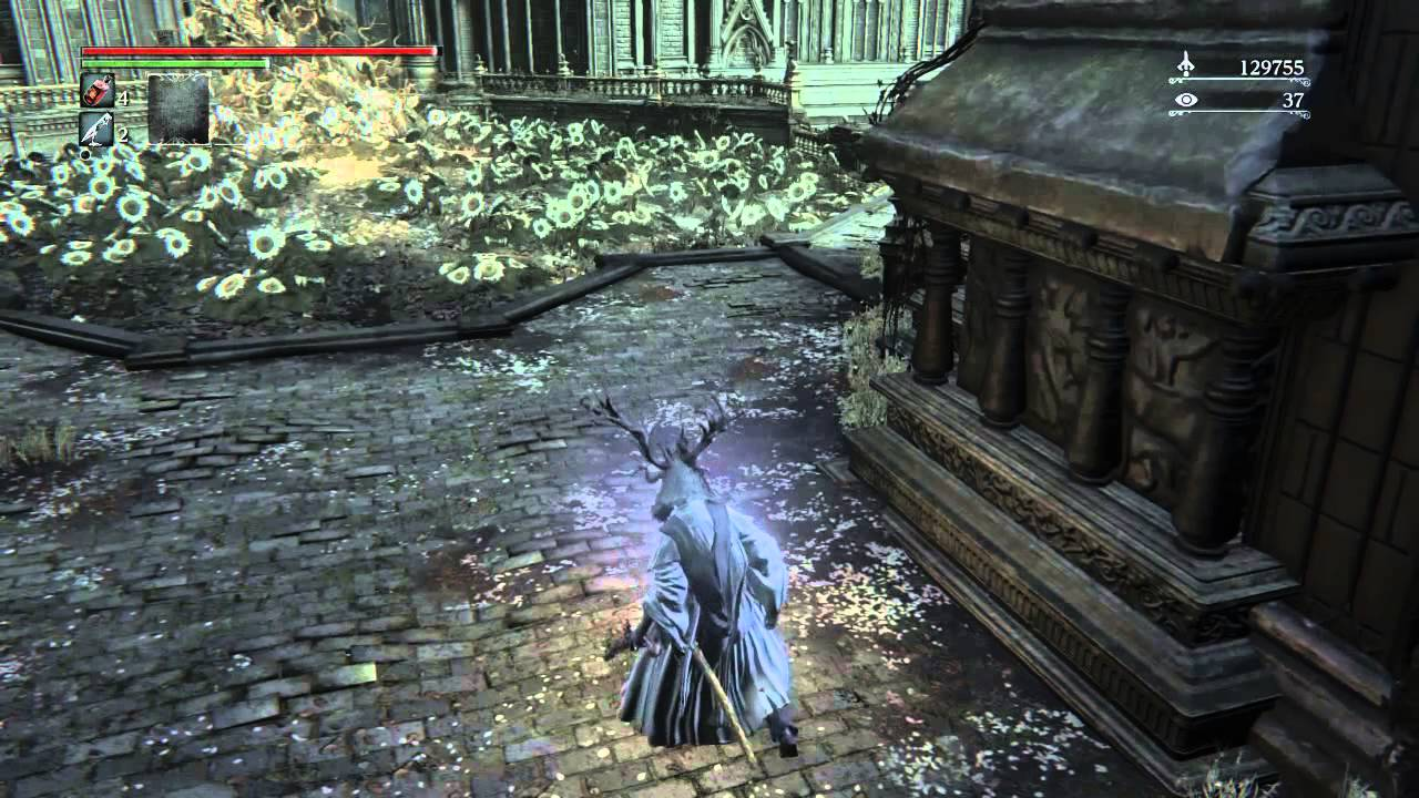 how to join co op bloodborne