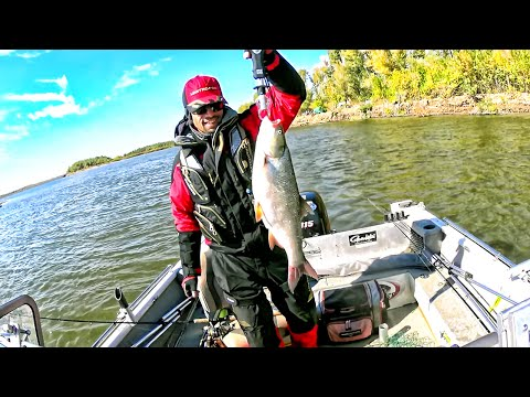 рыбалка осенью на волге в астраханской области
