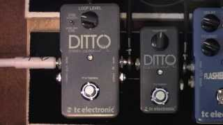 TC Electronic Stereo Ditto Looper Pedal Demo
