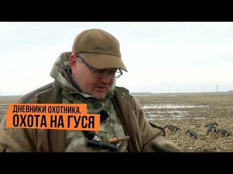 Дневники охотника. Охота на гуся