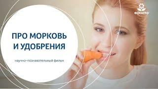 Про морковь и удобрения