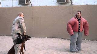 Run Forrest, Run!  Sick Him Boy! Good Dog! K9 Cops
