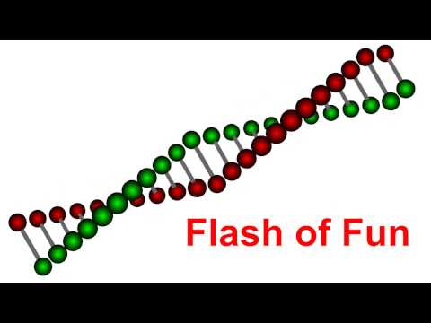 Adobe Flash animation tutorial : How to make 3D DNA animation in flash easily