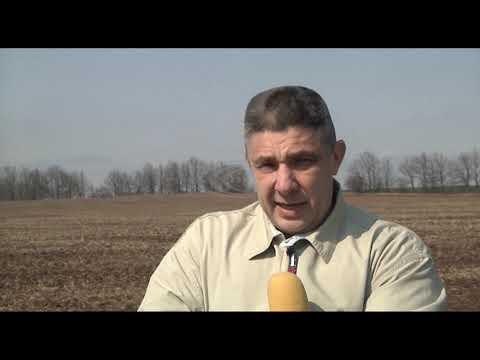 Телебачення Слов'янська – С-плюс: 31 березня, вночі,  Верховна рада таки затвердила закон про землю.