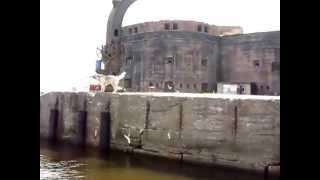 Форт Александр(Экскурсия на форт Александр. Встречают чайки и собака. Кронштадт. 13.07.2013., 2013-07-13T20:39:56.000Z)