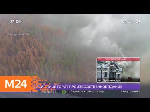 В Красноярском крае потушили более 100 тысяч гектаров горящих лесов - Москва 24