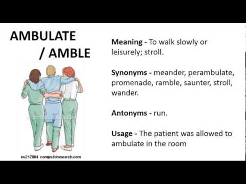Vocabulary Made Easy Meaning of Ambulate Synonyms Antonyms and its Usage  YouTube