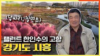 [2TV 생생정보] 탤런트 한인수의 고향 경기도 시흥!(갯골생태공원, 오이도...)