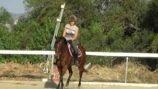 Janel and Baby-Lou Novice Dressage Practise Test for Mary Robbins